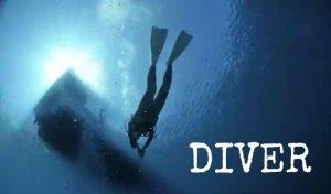 DIVER(ダイバー)のメリットと評判【WordPressテーマ】使い方と使用感をレビュー
