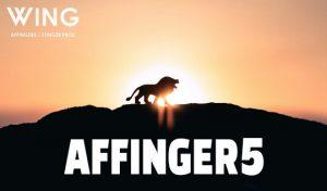 アフィンガー5の評判と使い方をレビュー【料金・購入】デザイン済みデータが簡単